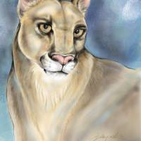 Tribute to Sandy Art Prints & Posters by Lori Blaylock