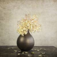 STILL LIFE WITH HYDRANGEAS