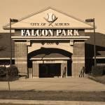 """Falcon Park - Auburn Doubledays"" by Ffooter"