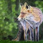 """Fox"" by RaymondOre"