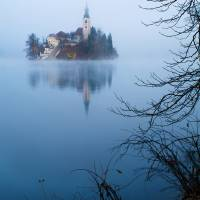 Misty Lake Bled Art Prints & Posters by Ian Middleton