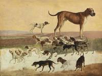 Study Of Dogs , Jacques-Laurent Agasse