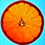 """""""Orange Slice With Blue"""" by SplitWindow"""