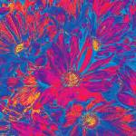 """Pink Blue Floral Flower Fine Art"" by MissDawn"