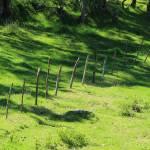 """""""Fence on a Farm"""" by rhamm"""