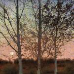 """three impressionist trees"" by rchristophervest"