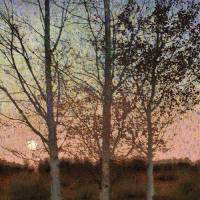 three impressionist trees by r christopher vest