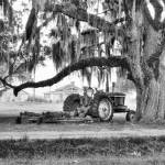 """John Deere under the Oak"" by Hansen"