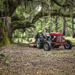 """Massey Ferguson under the Old Live Oak"" by Hansen"