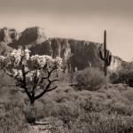 """Out Arizona Way"" by GordonBeck"