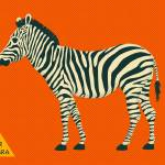 """Z is for Zebra"" by JazzberryBlue"