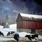 """Holstein Dairy Cows in Snowy Barn Yard with Old Ba"" by joyart"