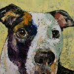 """Pit Bull Portrait"" by creese"