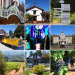 """Sonoma County Wine Country 20140906"" by wingsdomain"