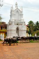 Indo Portuguese Monument, With Herd Of Buffalo
