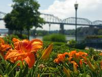 Spring time at Coolidge Park