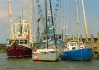 Shrimp Boats of Shem Creek