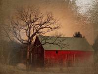 Wisconsin Barn and Tree