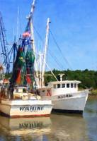 Shrimp Boats of McClellanville