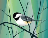 chickadee Abstract