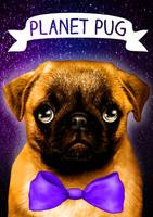 Pug in universe
