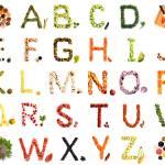 """Alphabet-maimum"" by bufo"