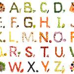 """Kitchen Alphabet"" by bufo"