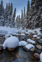 Snowy river with pine trees