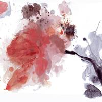 Red Timeless, Floral Art, Irena Orlov