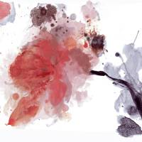 Red Timeless, Floral Art, Irena Orlov Art Prints & Posters by Irena Orlov