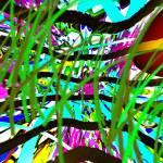 """11-4-2012KABCDEFGHIJKLMNOPQRTUVWXY"" by WalterPaulBebirian"
