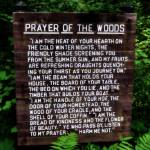 """Prayer of the Woods"" by Michelle1991"