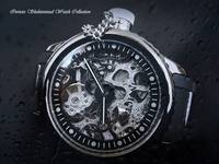 Invicta Russian Diver Skeleton, Blended