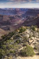 Grand Canyon East