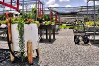 at the plant nursery