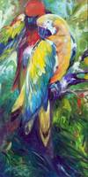 MACAW PAIR 2412