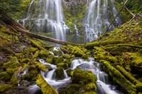 Proxy Falls Oregon 1
