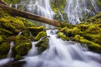 Proxy Falls Oregon 3