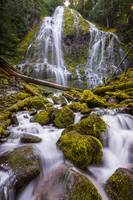 Proxy Falls Oregon 5