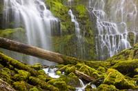 Proxy Falls Oregon 7