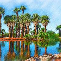 Palm Reflections Sketced Art Prints & Posters by Kirt Tisdale