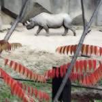 """""""The Rhino Walk"""" by KsWorldArt"""