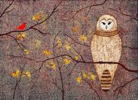 Barred Owl; original painting