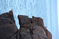 Man's Head in Stone at Thunder Hole, Acadia