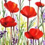"""Sweet Red Poppies by Irina Sztukowski"" by IrinaSztukowski"