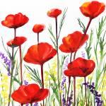 """Red Poppies Watercolor by Irina Sztukowski"" by IrinaSztukowski"