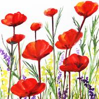 Red Poppies Watercolor by Irina Sztukowski