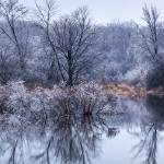 """""""The Ice Storm"""" by ZeipekisPhotography"""