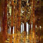 """""""Thick Palm Trees"""" by Kirtdtisdale"""