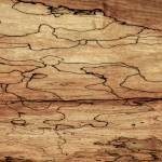 """Sugar Maple Spalted Wood Grain Pattern-Nature Abst"" by WilshireImages"